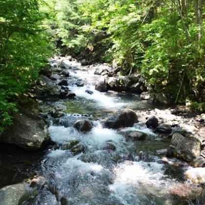 乗鞍高原の水が、透明すぎる件。